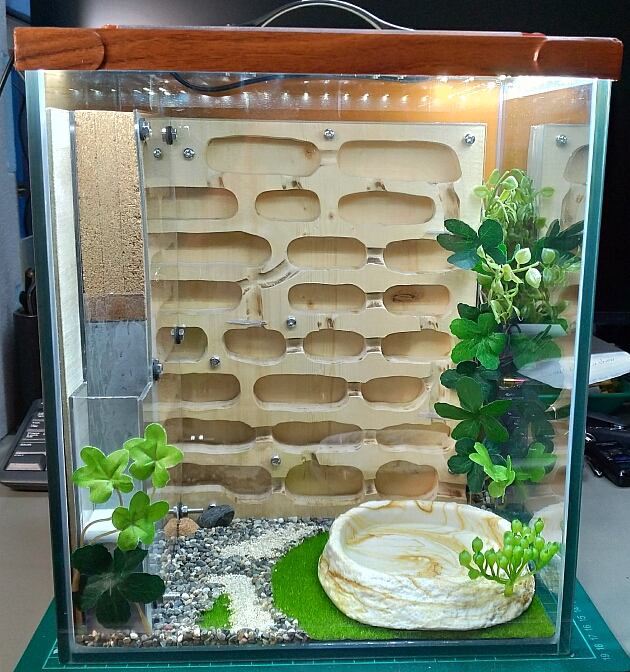 自作蟻飼育ケース正面 wood,cork,plaster DIY Formicarium